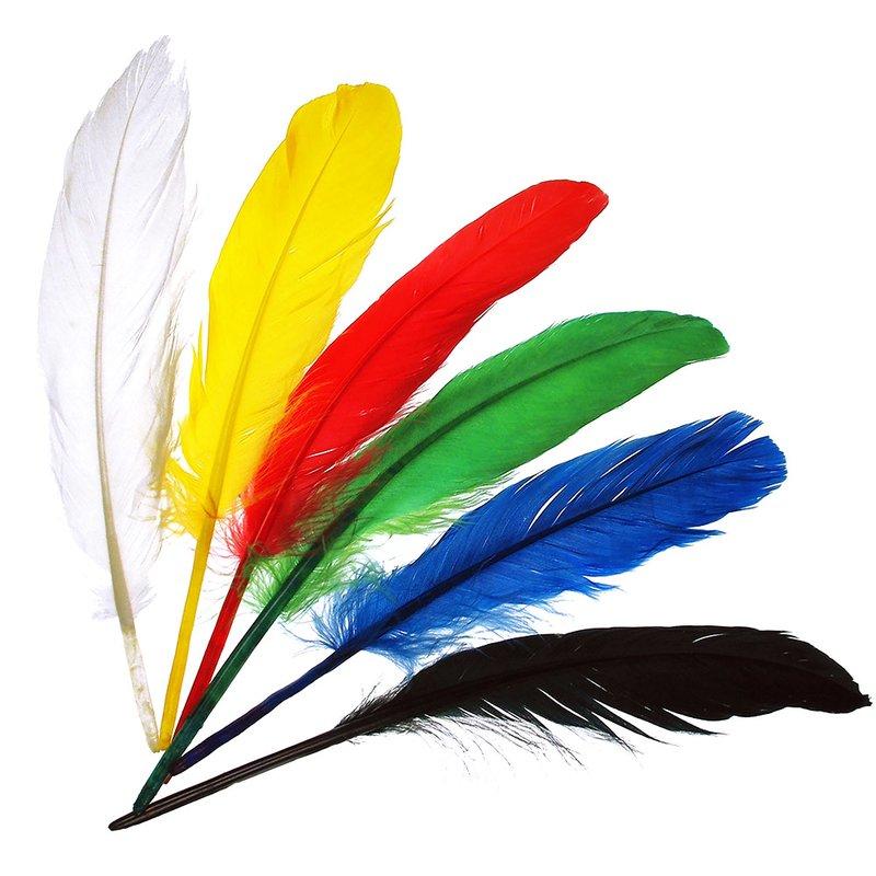 Indianerfedern 17 Stück 17//20 cm lang 6-fach sort.